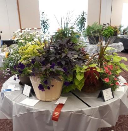 """A Million Garden Memories: Flower Show"